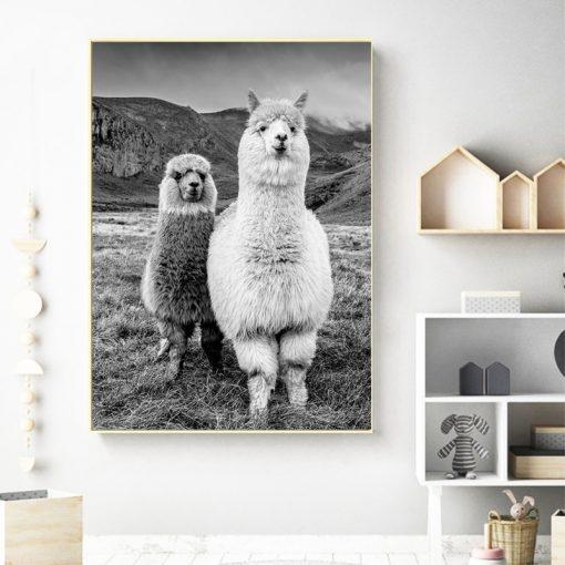 Black and white llama print wall art