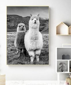 Black and white llama print wall art