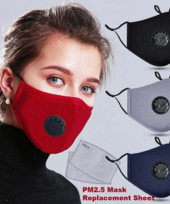 N95 Mask with Carbon filter